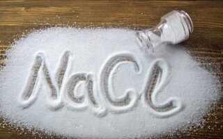 Можно ли давать кроликам соль