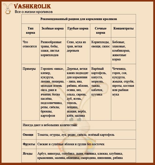 Список продуктов для кролика