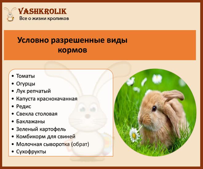 Корма условно разрешенные для кроликов