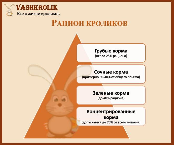 Питание для кролика