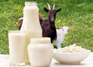 Молоко для крольчат
