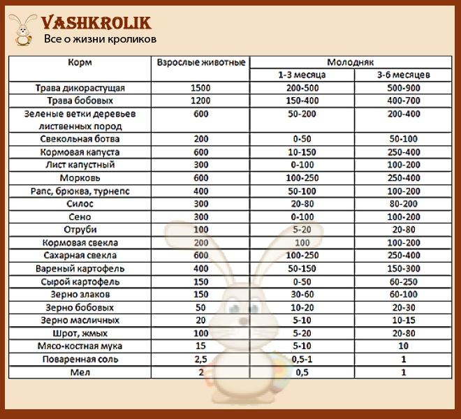 Таблица кормления кроликов