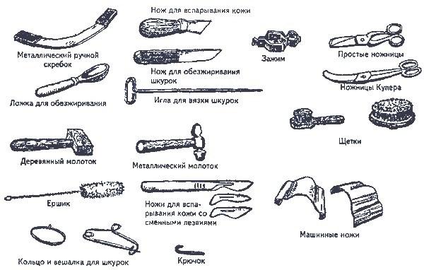Необходимые инструменты для выделки шкуры