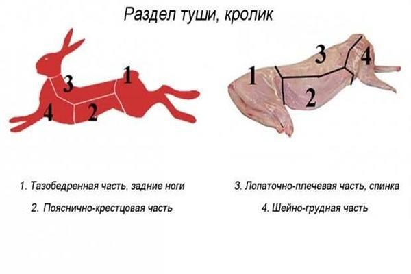 Кролик на порционные куски
