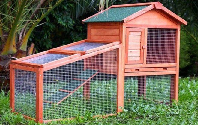 Место жительство кролика