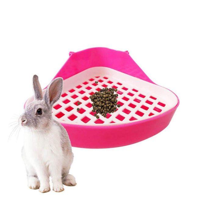Кролик покакал в лоток