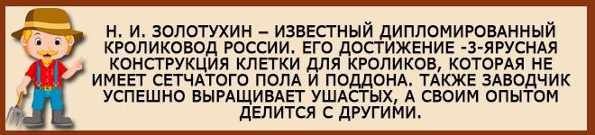 Кроликовод России Золотухин
