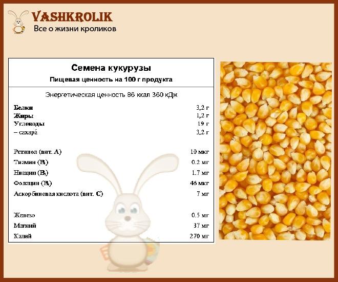 Полезные свойства кукурузы для кролика