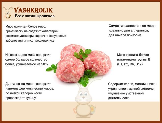 Полезные свойства мяса кролика