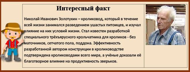 Николай Иванович Золотухин кроликовод